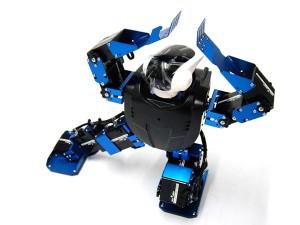 Robonova-II Metal Fighter